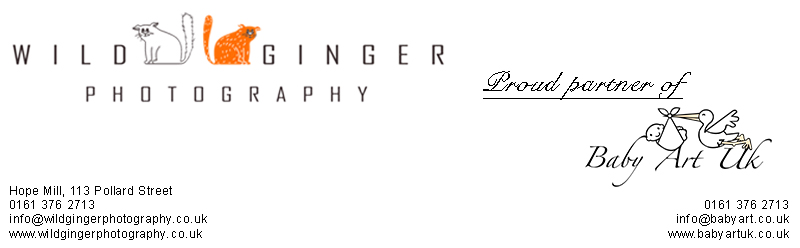 Wild Ginger Photography
