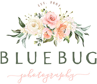 Blue Bug Photography